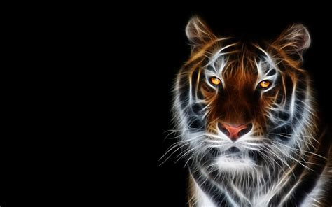 Animals Wallpapers 3d - neon animals wallpapers wallpaper cave