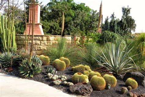 Garden Types : The Best Types Of Cactus To Grow In Your Garden