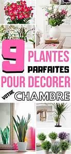 Plantes Pour Chambre : 9 plantes parfaites pour votre chambre plante plante chambre plante interieur et plante ~ Melissatoandfro.com Idées de Décoration