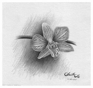 Orchid Sketch by Faith Te - Graphite Pencil Drawing ...