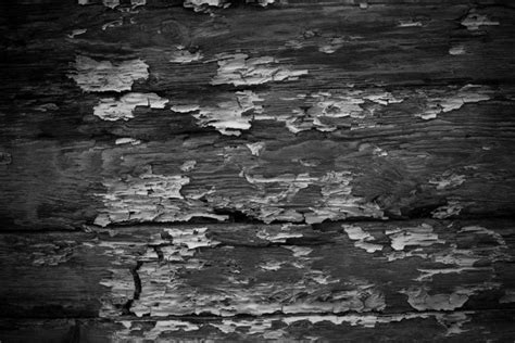 Free Texture Friday B&W Grunge Wood 2 Stockvault net Blog