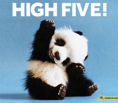 Meme High Five - high five meme 1000 images about misha on misha collins