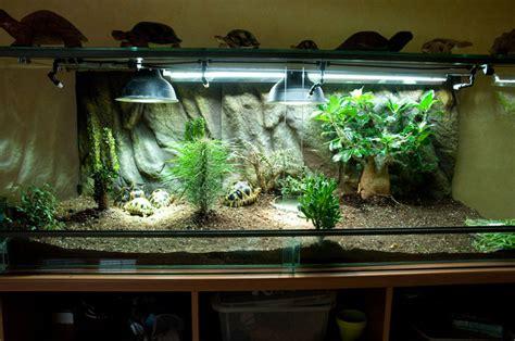 terrarium ou parcs ext 233 rieur pour tortue de terre reptile l 233 zard tortue et serpent