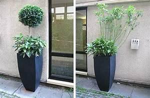 Kübel Bepflanzen Ideen : crowne plaza berlin referenzkundenblog von pflanzk beln ae trade online ~ Buech-reservation.com Haus und Dekorationen