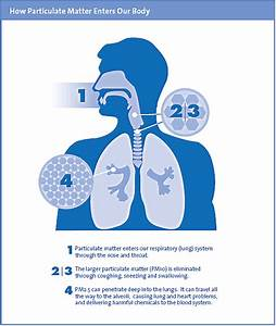 Transportation What Is Pm2 5