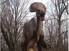 Dinosaur Olorotitan Information for Kids