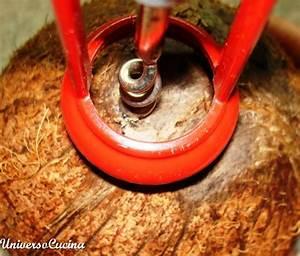 Come aprire il cocco Fare di Una Mosca
