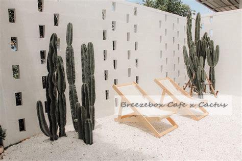 บรีซ บ็อกซ์ คาเฟ่ แคคตัส (Breeze Box cafe x Cactus) ชลบุรี ...