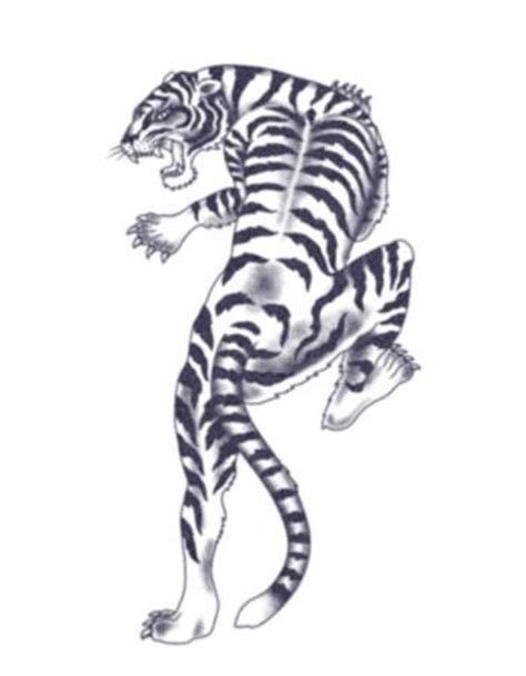 climbing tiger black  white temporary tattoo