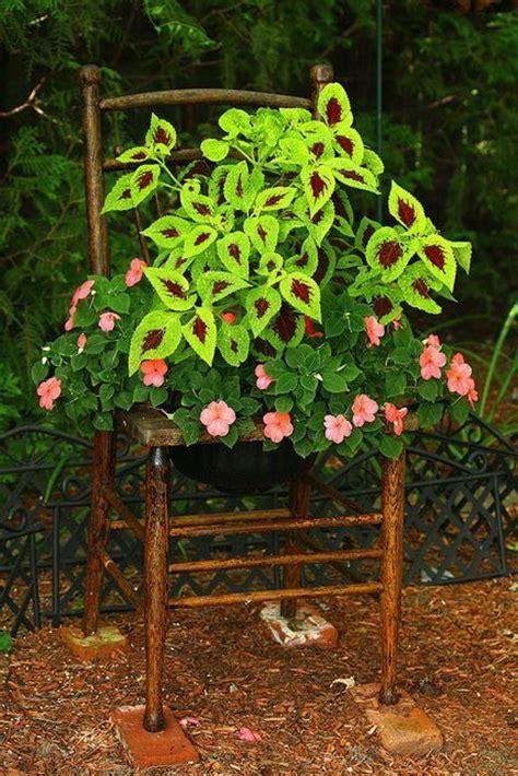 chair planter in the garden