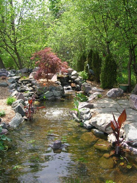 pictures of koi ponds koi pond in se michigan 171 landscape artisan