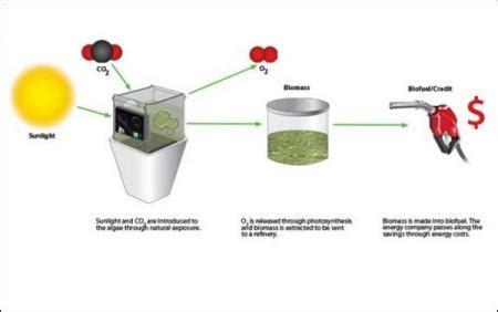 Дизельное топливо своими руками как сделать топливо для дизелей . блог ситистройoil