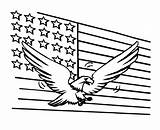 Flag Coloring American Eagle Pages Usa Printable Bald Sheets Getcoloringpages America Bestcoloringpagesforkids Flags July Whitesbelfast sketch template