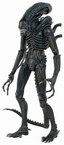 Aliens 1/4 Scale Action Figure 1986 Warrior | NECAOnline.com
