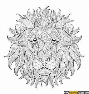 lion face coloring pages | Free Printable Online lion face ...