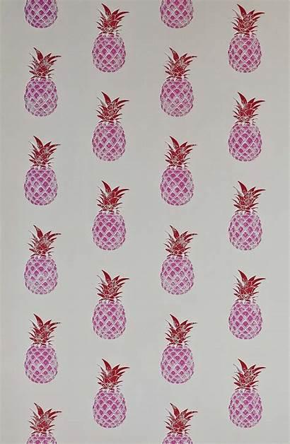 Pink Pineapple Girly Whatsapp Barneby Gates Wallpapers