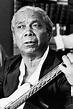 Nelson Cavaquinho | Musica Brasilis