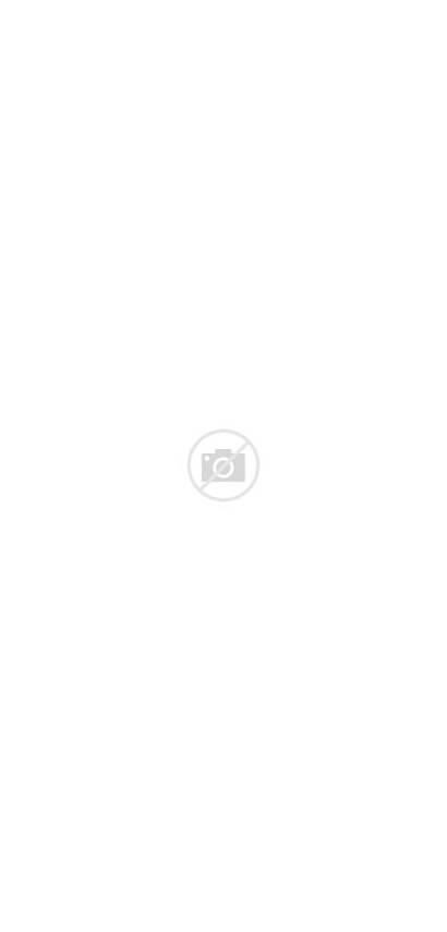 Blank Longboard Bamboo Square Tail Skateboards Skateboard