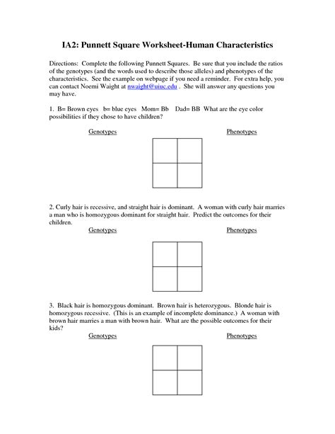 5 best images of printable punnett square worksheets