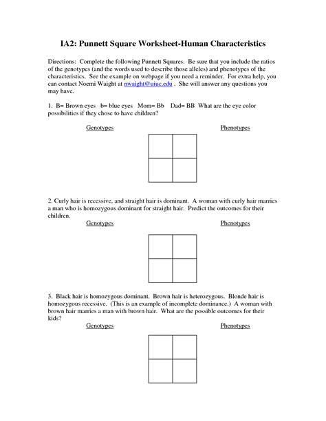 Punnett Square Worksheet 2 - Fatmatoru