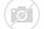 Luftbild von Gleisverlauf und Gebäude des Hauptbahnhofes ...