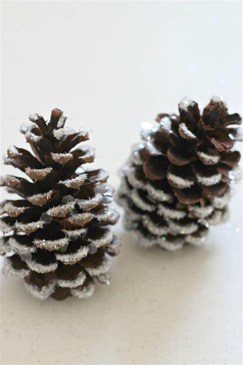 snowy pine cones  ways organize  decorate