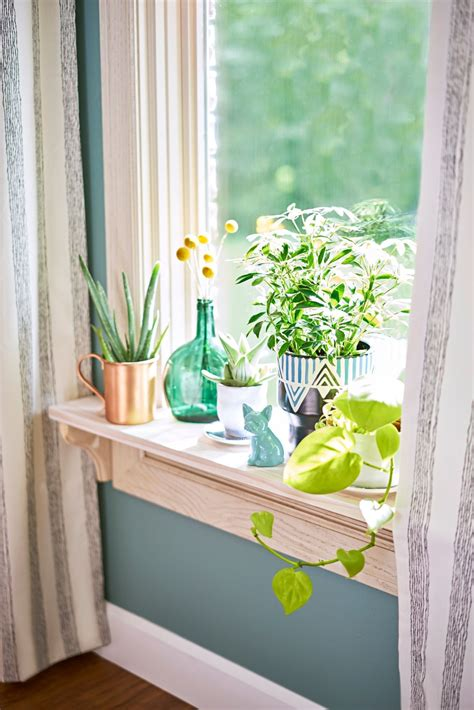The Windowsill by Bring The Outdoors In A Windowsill Is The Spot