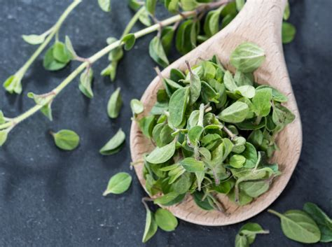 marjoram substitute what s a good oregano substitute spiceography