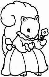 Squirrel Coloring Pages Animals sketch template