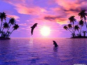 ♥happines is jumping for joy in the sunset with friends ...