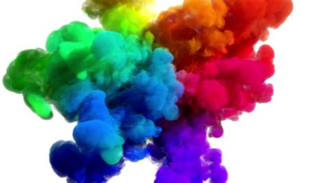 Colorful Rainbow Holi Powder Bounces Off White Canvas