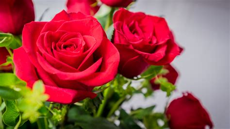 flower delivery   reviewscom