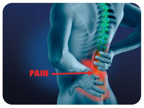 Back Pain  Sean Flynn Physiotherapist. Chase Funeral Home St Augustine Fl. Looking For Travel Insurance. Proton Therapy For Brain Cancer. Educational Psychology Phd Hsbc Pension Funds. Central Heating Repairs Large Shipping Labels. Svchost Exe Virus Removal Mouse Control Panel. Wall Street Technology Credit Card Disclosure. Online Marketing Dashboard Free E Newsletter