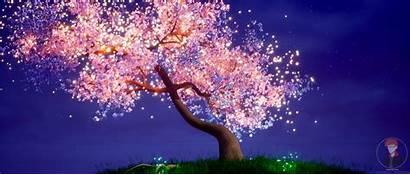 Cherry Blossom Tree Wallpapers Trees Baltana Cave