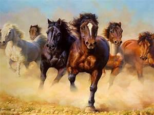 Animals Wild Horses Galloping Hd Wallpaper 3840x2400
