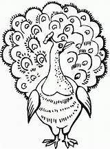 Peacock Coloring Pages Print Coloring2print sketch template