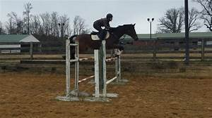 A Few More #GOTD Exercises from Laine Ashker | Eventing ...
