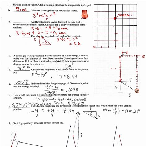 vector worksheet answers rcnschool