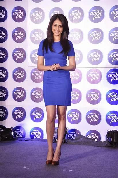 Genelia Souza Bollywood Dsouza Skirt Kiss Wallpapers