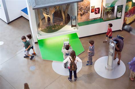 kimball natural history museum california academy