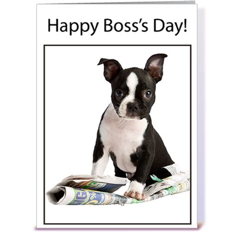 bosss day dog  newspaper greeting card  sandra rose
