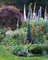 6 Steps to a No-Work Cottage Garden | Better Homes & Gardens flowers for cottage style gardens
