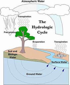Easy water cycle