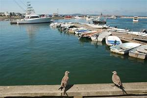 Plymouth, MA, Harbor Status Report | New England Boating ...
