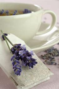 Lavender Tea Recipe