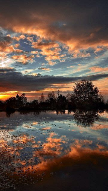 Amazing Sunset Reflection Clouds Red Tree Lake Sea