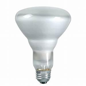 Recessed lighting best light bulbs