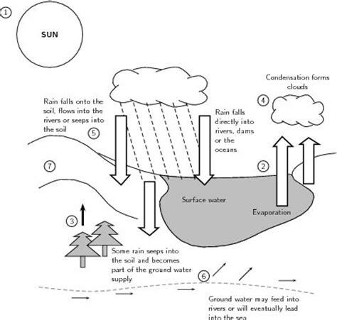 images  lens diagram worksheets water cycle