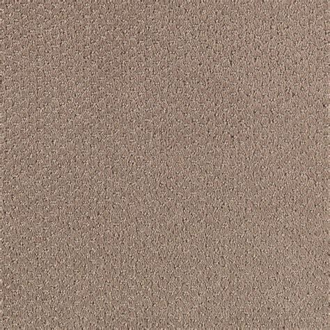 How To Shoo A Rug shoot out color sagebrush pattern 12 ft carpet 0343d 25