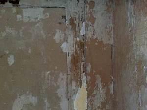 Tapeten Spalten Ausbessern : bitte um rat f r das tapezieren alter w nde ~ Lizthompson.info Haus und Dekorationen